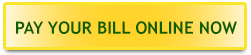 pay your bill online button